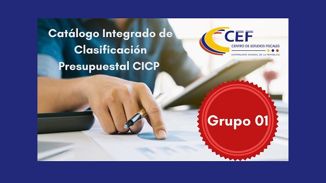 imagen CICP gr 1 reducida