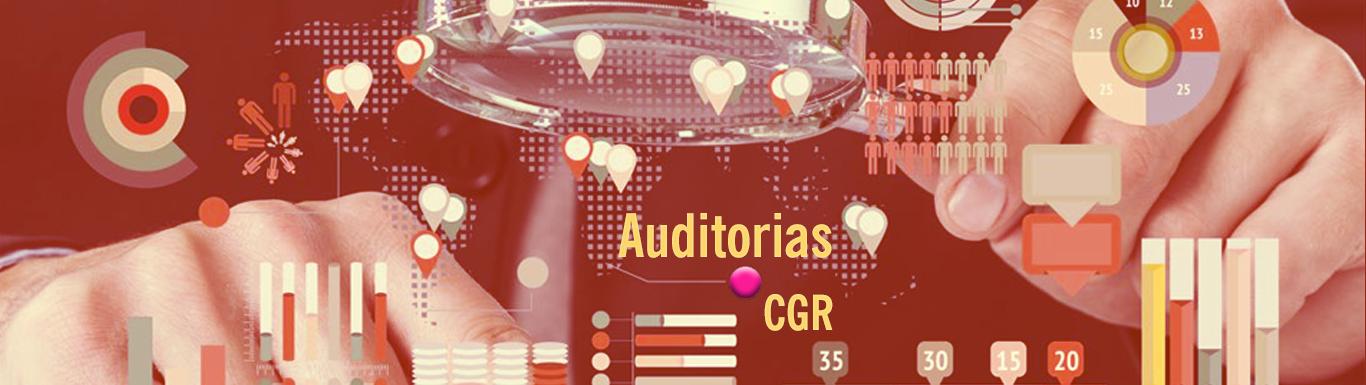 114 Principios Fundamentos y Aspectos Generales para las Auditorias en la CGR GR07