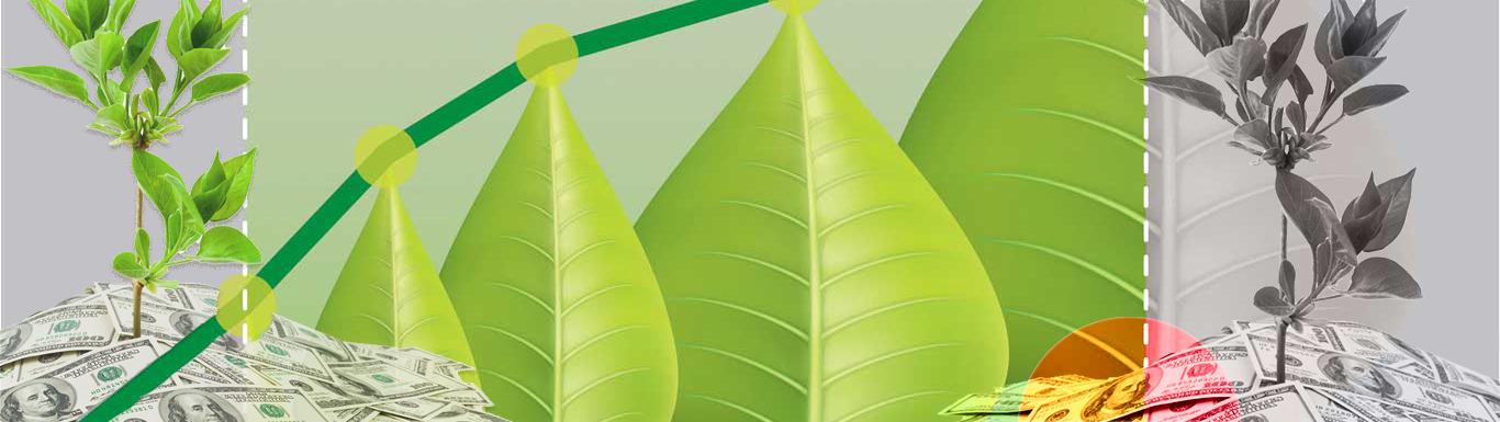 Auditoria a la aplicación del Principio de Valoración de Costos Ambientales