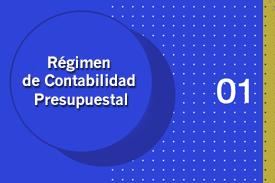 Régimen de Contabilidad Presupuestal Pública - AGR