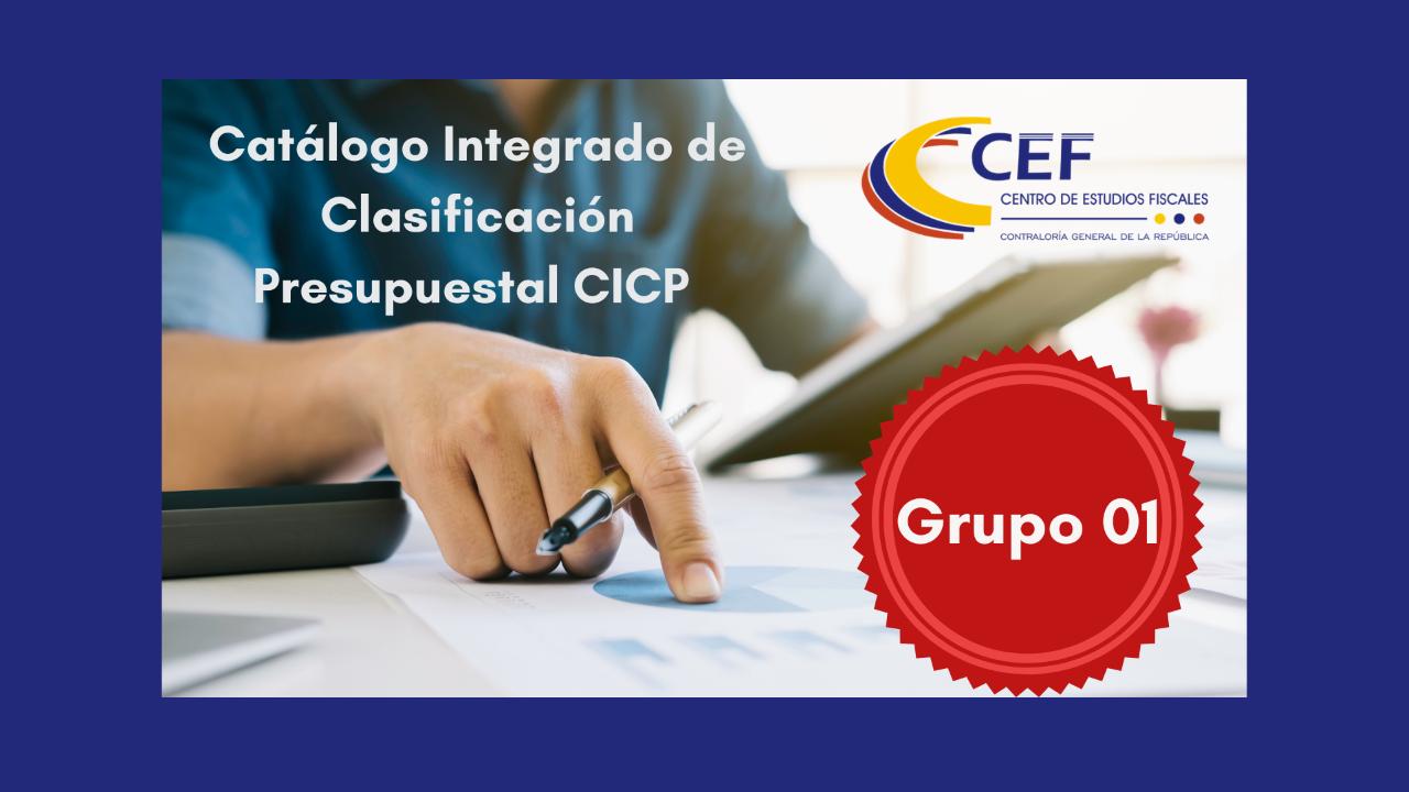 Catálogo Integrado de Clasificación Presupuestal CICP Grupo 1